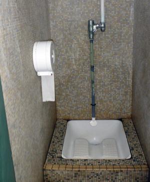 フランスにもあった「日本風トイレ」