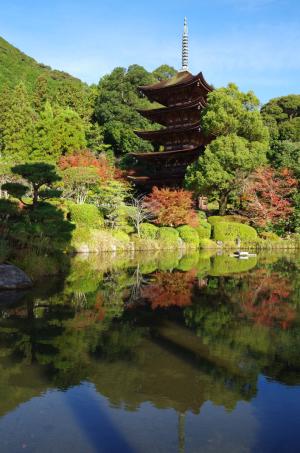秋の日本三名塔・瑠璃光寺五重の塔