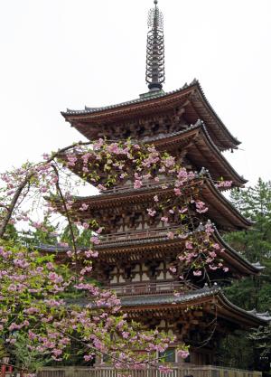 世界遺産・醍醐寺五重塔