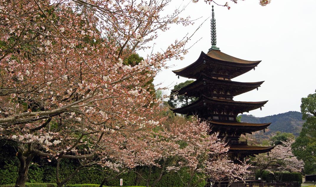 日本三名塔・瑠璃光寺・五重塔