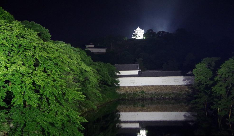 彦根城の夜景